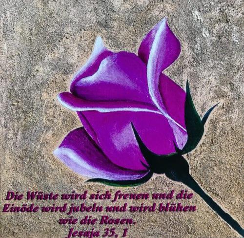 Ulrike Weinhold